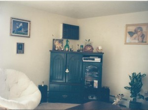 Unfortunately, I don't have any pictures of my first apartment. These are pictures of my 2nd apartment