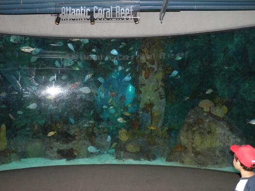 Albuquerque Aquarium